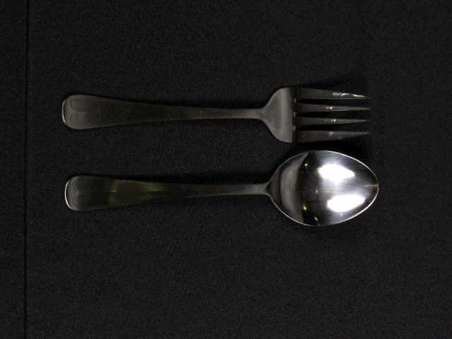 Where to rent Serving Fork Sm. in Barrie Ontario, Toronto, Nottawasaga Bay, Georgian Triangle
